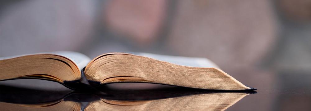 a palavra de deus hoje biblia aberta